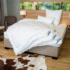 Testsieger Bettdecke